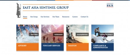 East Asia Sentinel Group